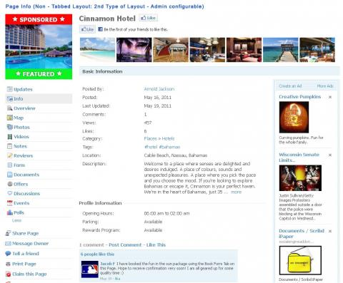 Page Info (Non - Tabbed Layout: 2nd Type of Layout - Admin configurable)