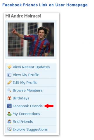 Member Profile: Facebook Friends Page Link