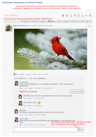 Advanced Comments On Activity Feed