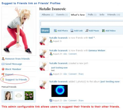 Suggest to Friends link on Friends' Profiles