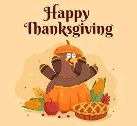 Thanksgiving, Black Friday & Cyber Monday Discounts – Enjoy Upto 25% Off