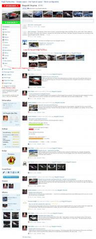 Page Profile (Non - Tabbed Layout : 2nd Type of Layout - Admin configurable)